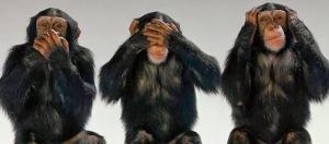 Les Trois singes sages...la  signification secrète et cachée