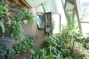 earthship-indoor-greenhouse-gardens